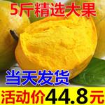 鸡蛋果5斤包邮蛋黄果海南