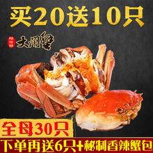 【99元抢30只全母】现货阳澄湖大闸蟹鲜活新鲜螃蟹全母蟹顺丰包邮