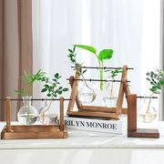水培植物花瓶水养绿萝九里香水培玻璃花盆简约创意透明桌面小容器