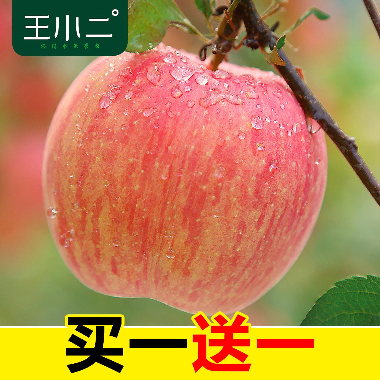 苹果山东烟台新鲜