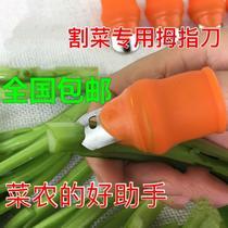 花椒树用修剪掐 割菜拇指刀摘菜工具指套指甲夹摘菜刀修采摘器多