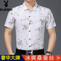 秋季薄款全棉休闲修身条纹男士衬衣中年商务正装潮2018衬衫男长袖