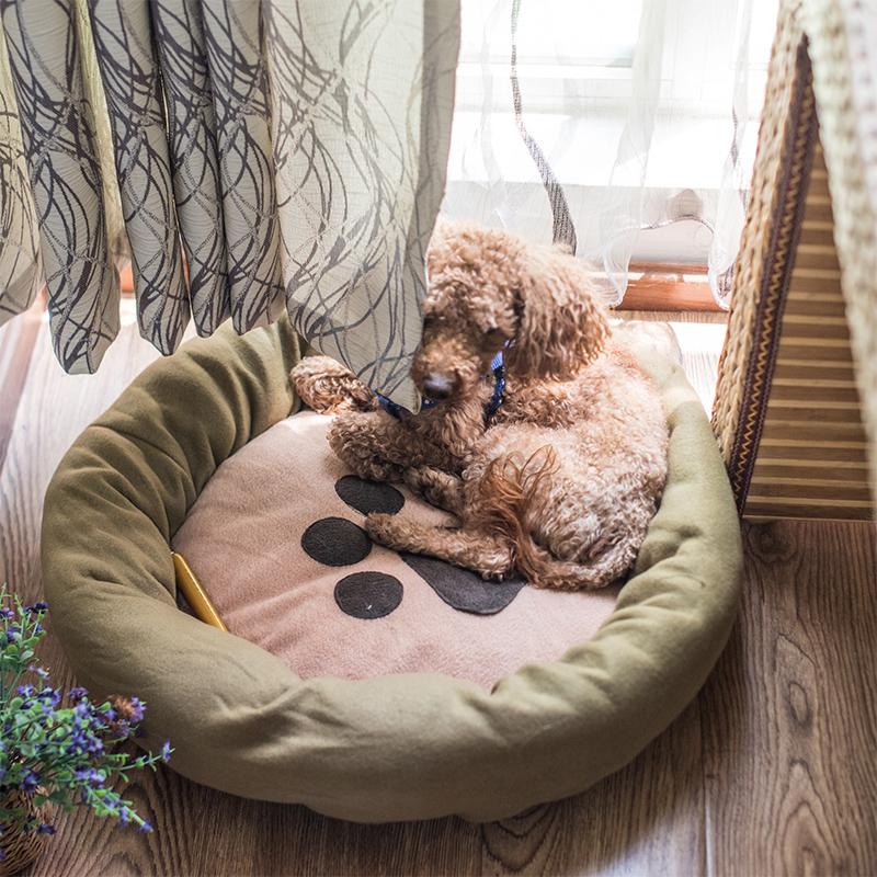 泰迪宠物沙发