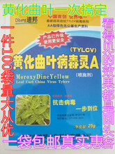 The efficacy of special fungicides for foliar fertilizer, pepper and tomato with yellow curl leaf virus Ling disease is good.
