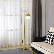 水晶羽毛白色立式落地灯婚庆客厅书房卧室床头台灯美容主播补光灯