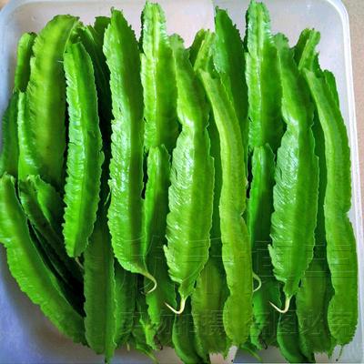 海南特色庭院春四季四角豆种籽四棱豆种子杨桃豆翼豆菜豆蔬菜种子