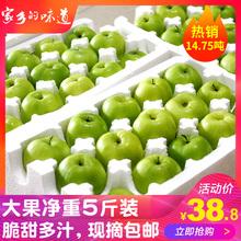 甜脆牛奶枣大青枣水果5斤新鲜枣子贵妃枣冬枣台湾品种东枣苹果枣