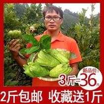 瓶果脯凉果休闲零食330gX2广东特产香港甜心屋润喉佛手果干包邮