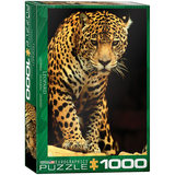 Eurographics Canada Import Puzzle Adult Puzzles Leopard 1000 Puzzle Toys