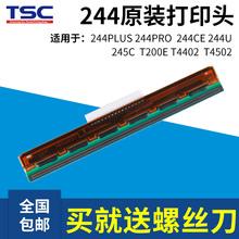TSC TTP-244Pro/Plus不干胶标签条码打印机配件热敏打印头打印针