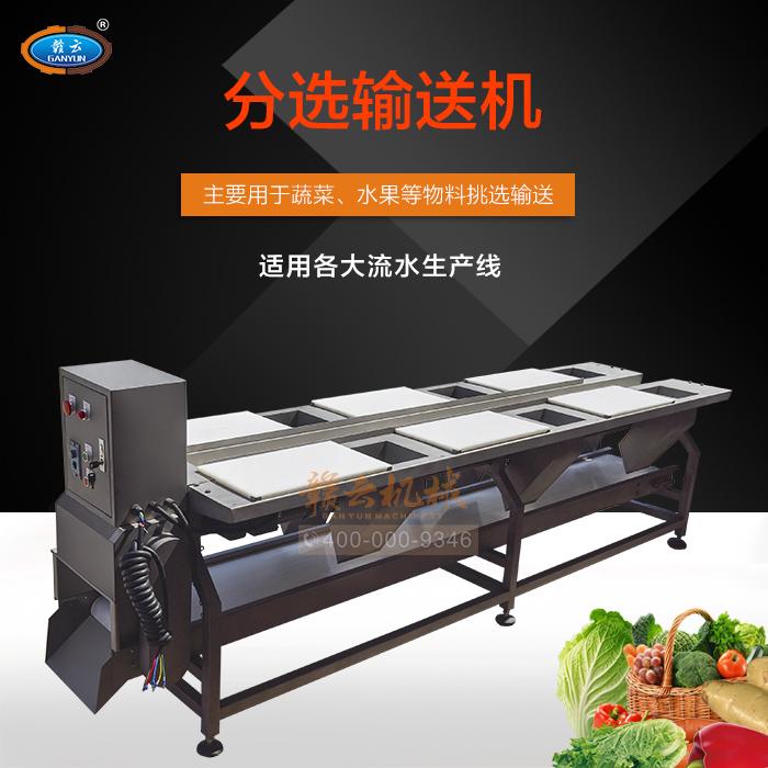 六工位蔬菜分选台挑拣台果蔬清洗配套蔬菜分选输送机蔬菜挑选台