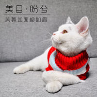 Nafu cats and cats clothes pets British short cat springs Siamese cat high collar hairless cat spring and autumn thin sweater