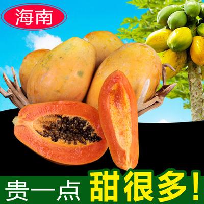 套新鲜水果木瓜包邮海南红心牛奶木瓜树上熟5斤现摘现发热带当季