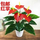 仿真盆栽景小红掌居家摆件绿色植物办公桌装饰单支红花爱迪儿直销