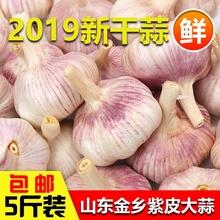 干蒜新鲜大蒜头新大蒜山东金乡农家自种5斤低价包邮紫皮大蒜