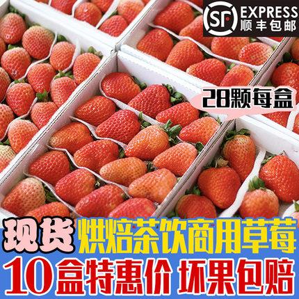 新鲜草莓10盒28颗小果双流冬草莓同城水果夏季鲜草莓江浙沪皖包邮