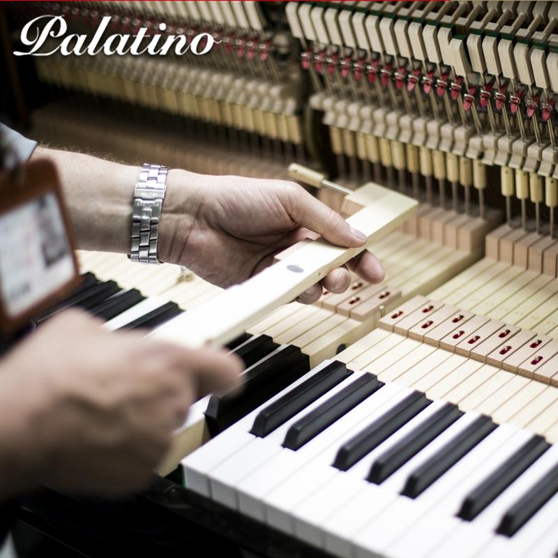 立式品牌钢琴德国技术大人家用专业演奏 21 GA 帕拉天奴 Palatino