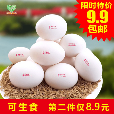 幸福农场新鲜鸡蛋无沙门氏菌鸡蛋生吃无抗可生食鸡蛋温泉蛋7枚鲜