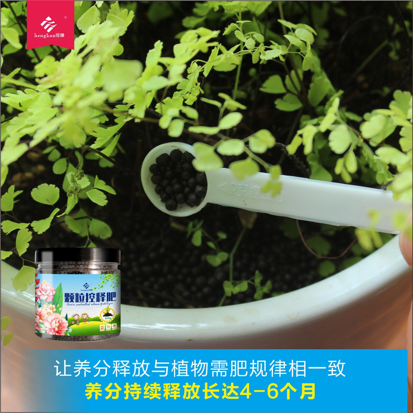 家用有机肥 缓释花肥 多肉绿萝兰花专用 花卉盆栽通用型复合肥料