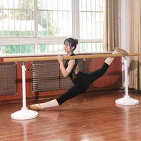 Professional dance room pole gym adult children home mobile lifting leg dance dance pole dance pole