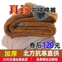 抗寒40度男驼绒棉裤女加厚加绒保暖裤中老年人高腰大码宽松羊毛裤