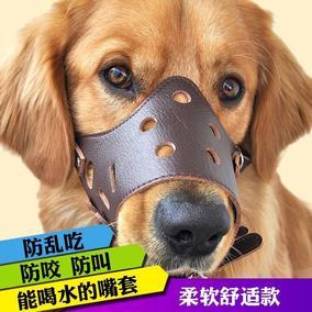金毛狗大型犬狗狗防狗叫防咬嘴套狗嘴套中型犬止吠器嘴巴防咬口罩