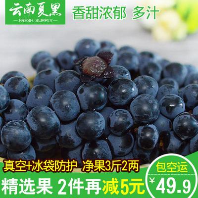 云南夏黑葡萄新鲜水果黑提子无籽巨峰黑加仑葡萄夏黑3斤孕妇水果
