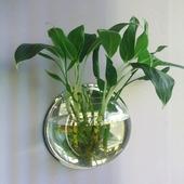 草缸壁挂鱼缸花瓶挂式花盆墙上装 饰立体亚克力墙贴背景墙家居饰品