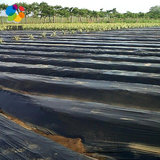 Billion grass mulch film black mulch white film agricultural film agricultural film plastic film weed film winding film