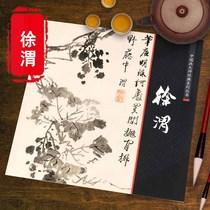 艺术图书书籍册集画画国画林良大师经典系列丛书中国画