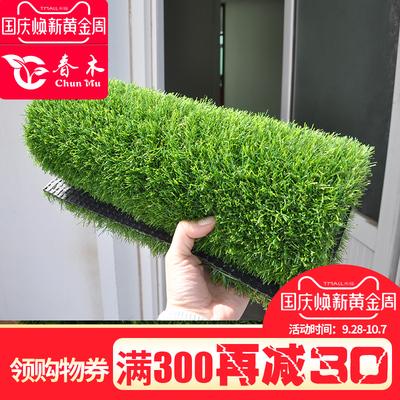 仿真人造草坪室内幼儿园地毯阳台绿植色户外人工塑料假草皮跑道