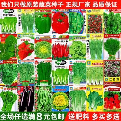 蔬菜种子四季播阳台农家庭院盆栽辣椒番茄黄瓜韭菜香菜草莓籽包邮