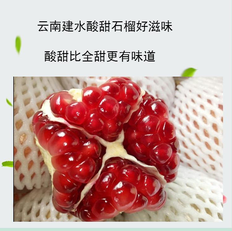 云南特产建水酸甜石榴 孕妇酸石榴新鲜水果5斤装现摘非蒙自甜石榴