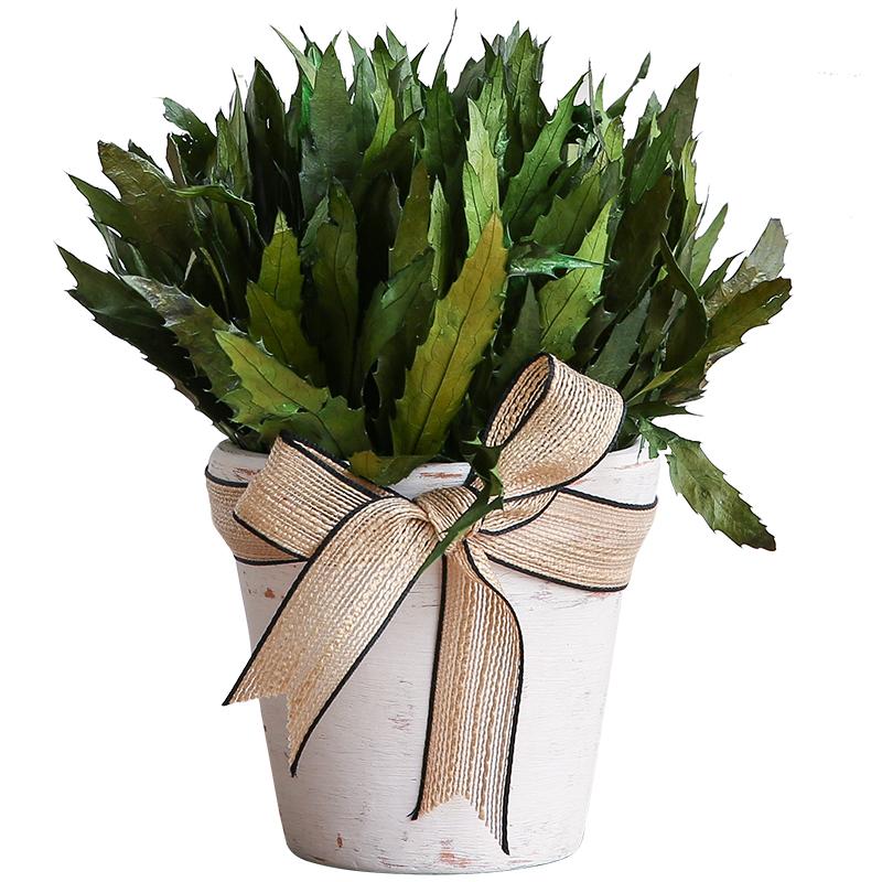 米子家居植物干花摆件PAN020018