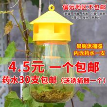 果蝇诱捕器果园菜地瓜果实蝇针蜂果蝇引诱剂内含捕抓器诱剂包邮