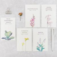 小植物小卡片