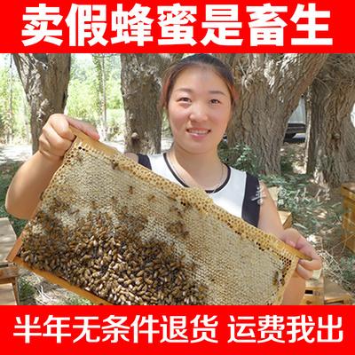 野生土蜂蜜1000克新疆阿克苏甘草花黑蜂蜜液态纯正天然农家自产