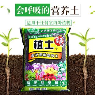兰花培养土