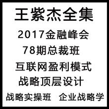 王紫杰全集商道企业战略学顶层设计金融峰会78期总裁班鱼塘财富论