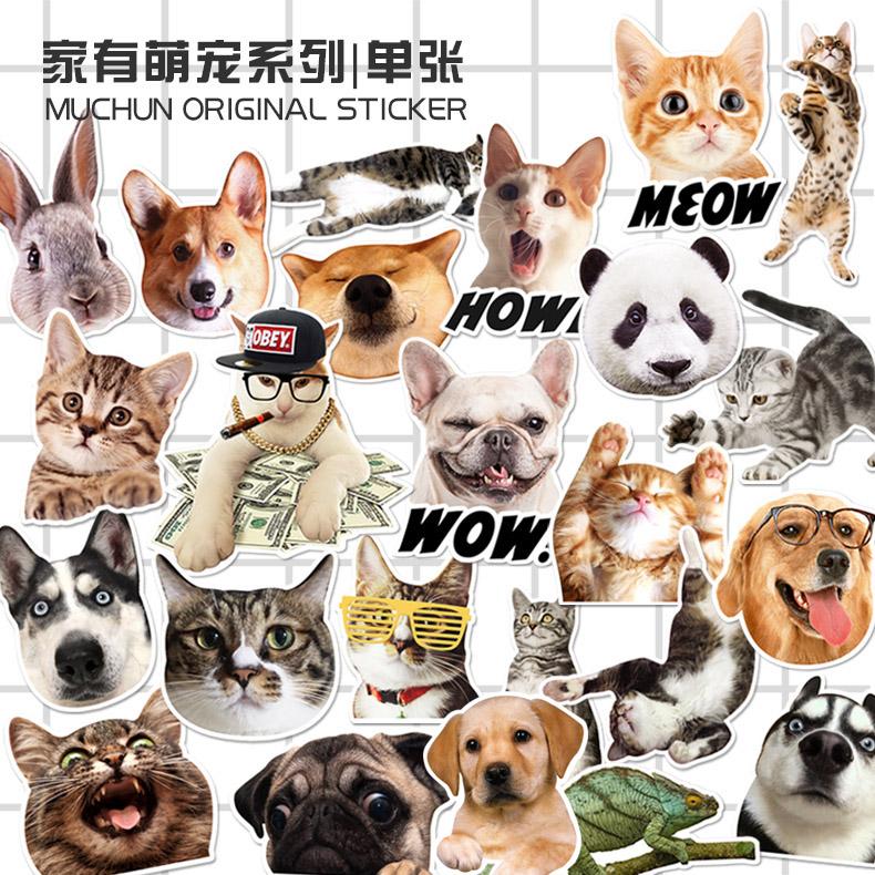创意动物猫咪宠物行李箱贴纸箱贴防水耐磨潮牌个性滑板贴纸 单枚