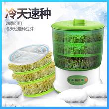 菲尚豆芽机家用全自动多功能大容量发豆牙菜桶生绿豆芽罐育苗盆