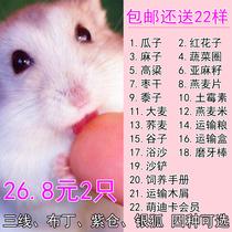 Living Hamster Living Baby Pet hamster pet living a pair of silver fox cubs milk tea Pudding third line