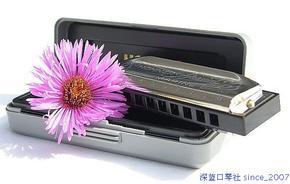 蓝粤特惠★德国Hohner Special 20 十孔布鲁斯口琴sp20 (常用调)