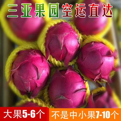 空运 蜜宝火龙果红肉新鲜水果海南三亚金都一号红心火龙果5斤包邮