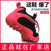 麦乐夏网面登山鞋 正品 男旅游鞋 女减震透气防滑越野轻便户外徒步鞋