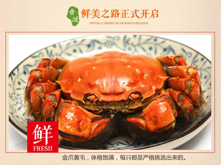 【买8只送2只】正宗阳澄湖大闸蟹鲜活螃蟹3.0-2.5两共10只公母蟹