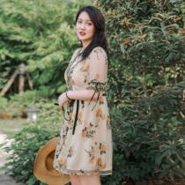 辣妈起义2019夏装新款大码女装胖女人遮肚显瘦连衣裙胖mm洋气裙子
