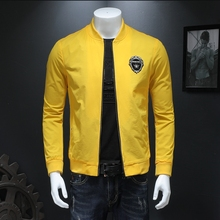 Men's jacket, new spring and autumn jacket, vertical collar baseball suit, Korean version of self-cultivation embroidery jacket, thin fashion