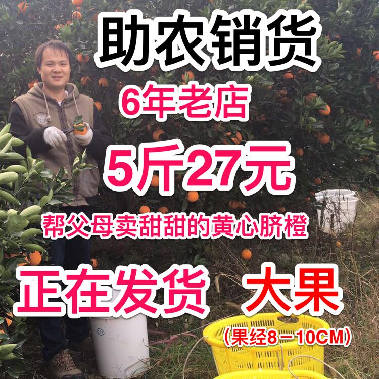 湖南新宁崀山脐橙橙子手剥橙应季水果甜橙非赣南脐橙带箱5斤大果