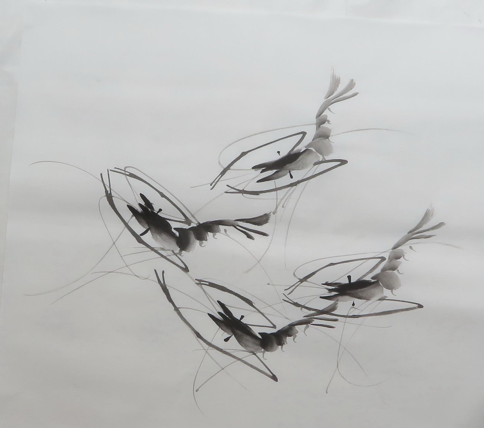 QG7100862芯特价三尺斗方水墨无款画虾客厅装饰字画花鸟国画